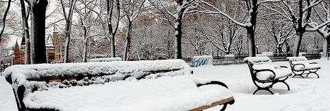 snow-grange